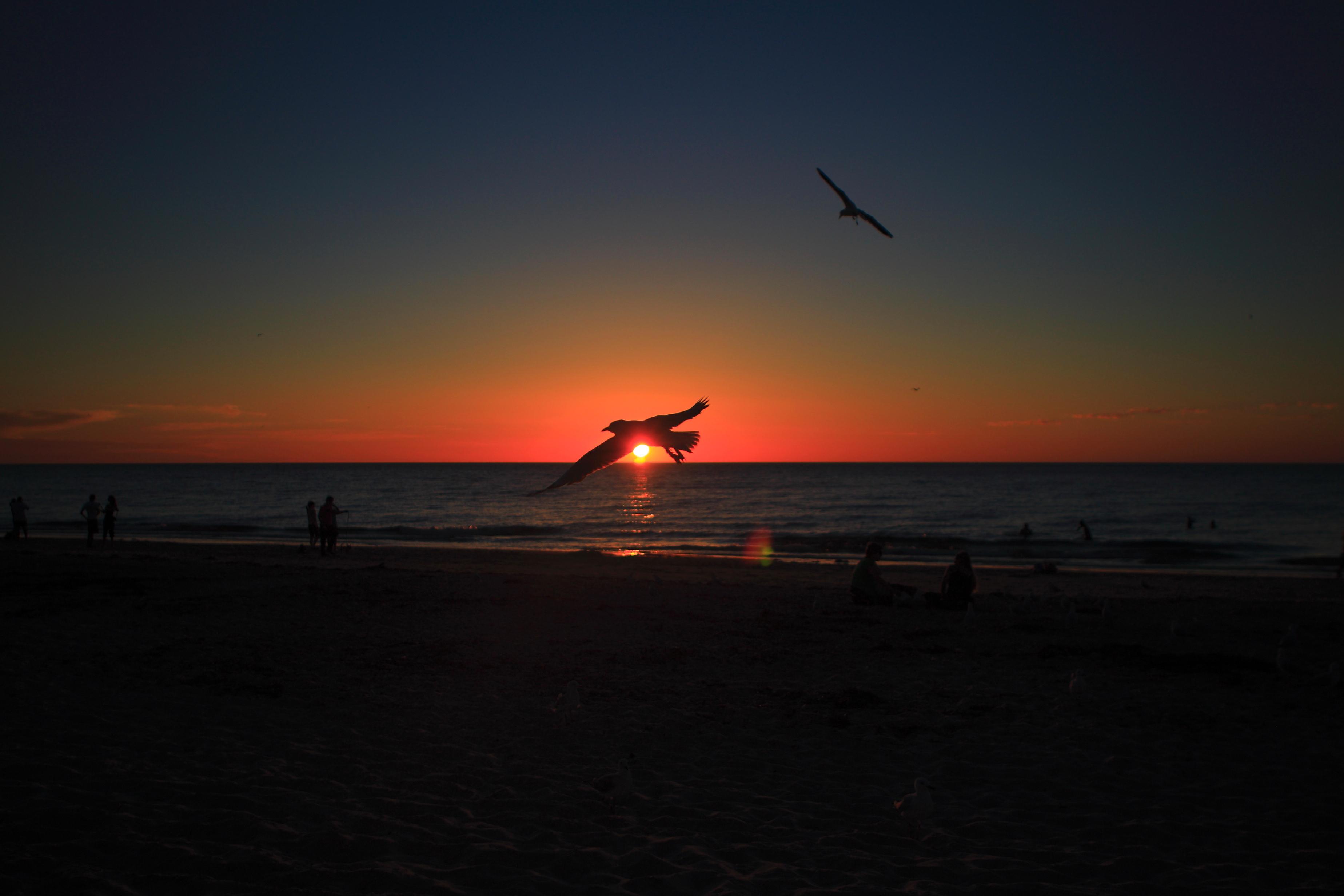 Australia_Beaches_123