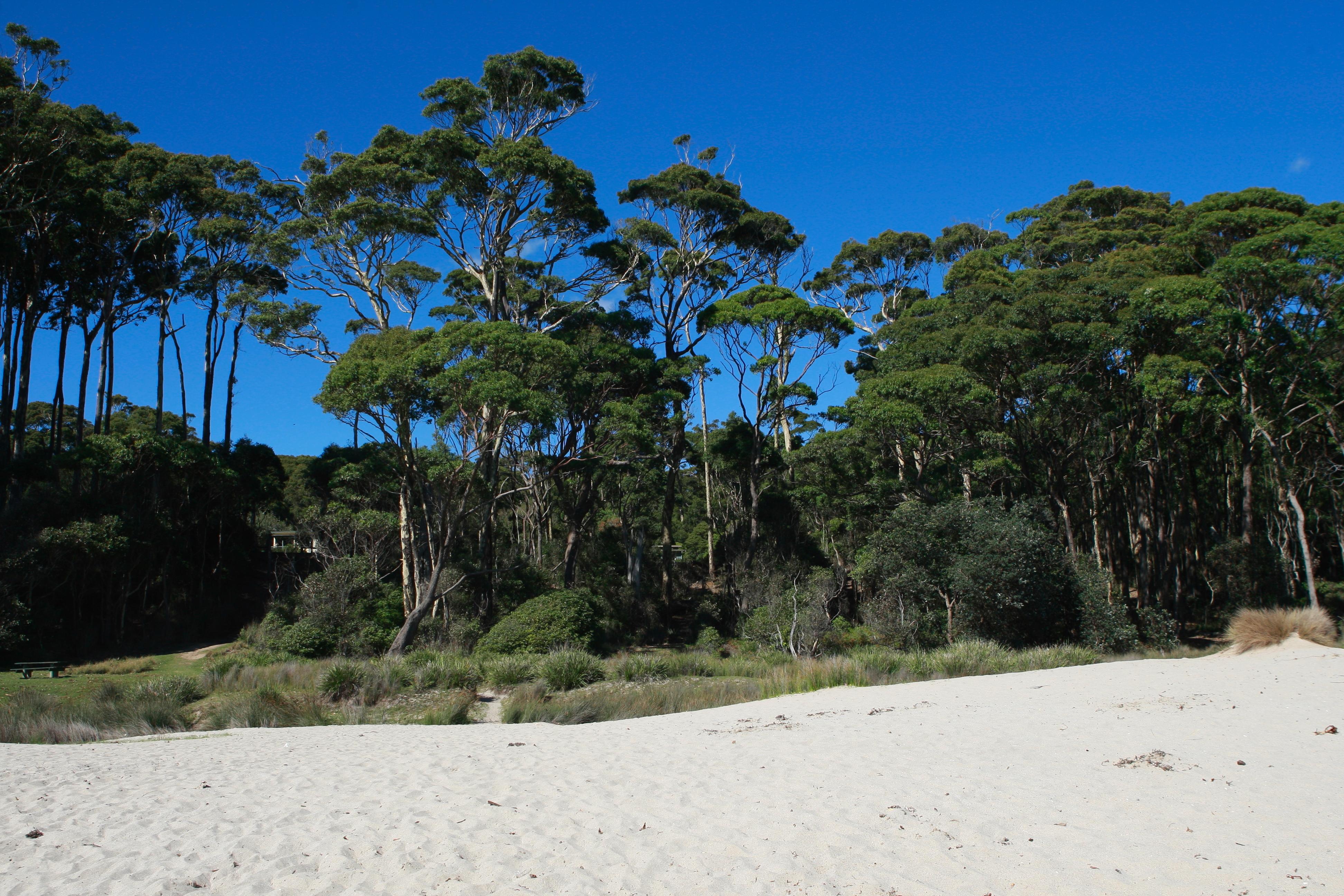 Australia_Beaches_35