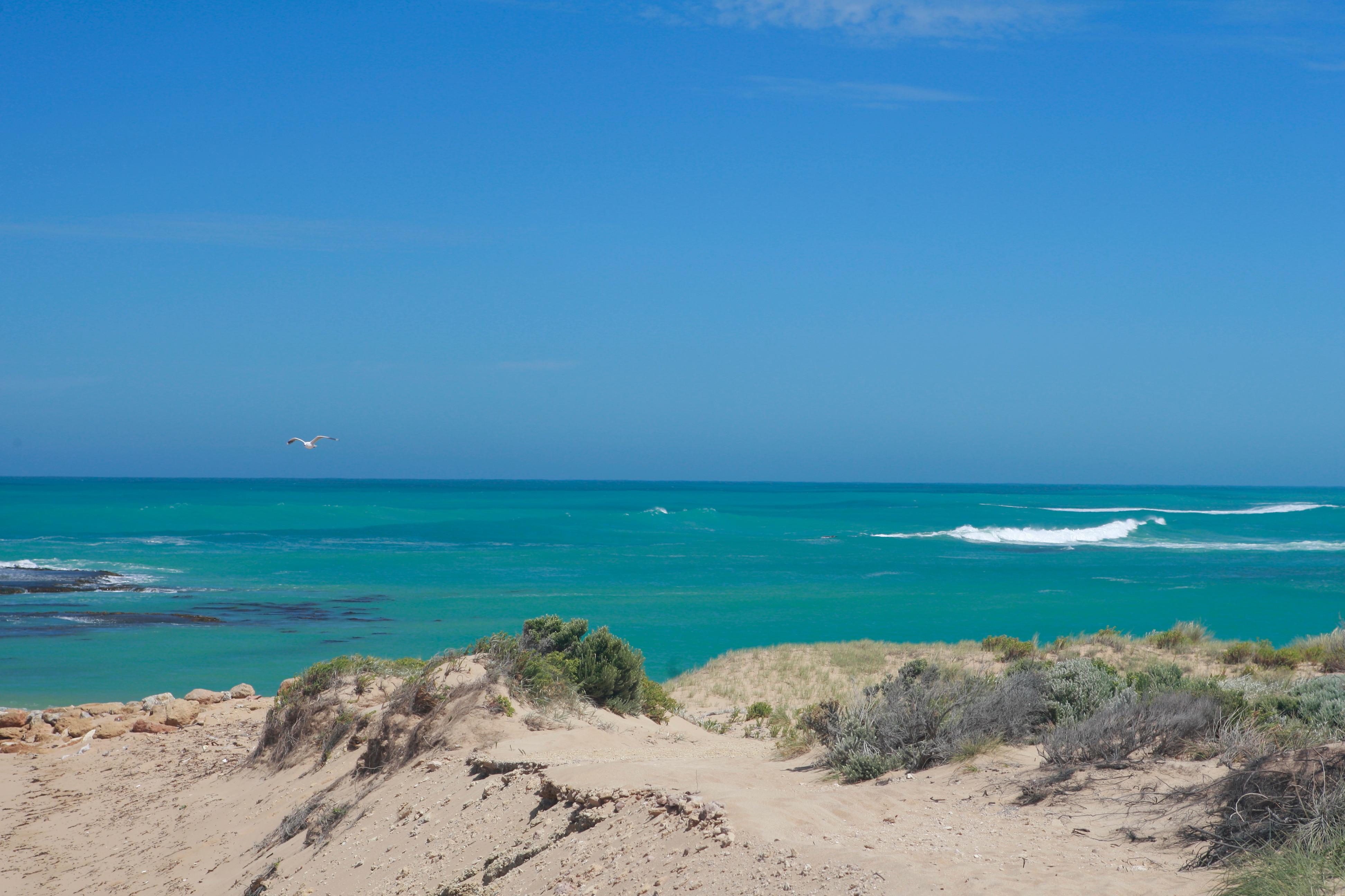 Australia_Beaches_81