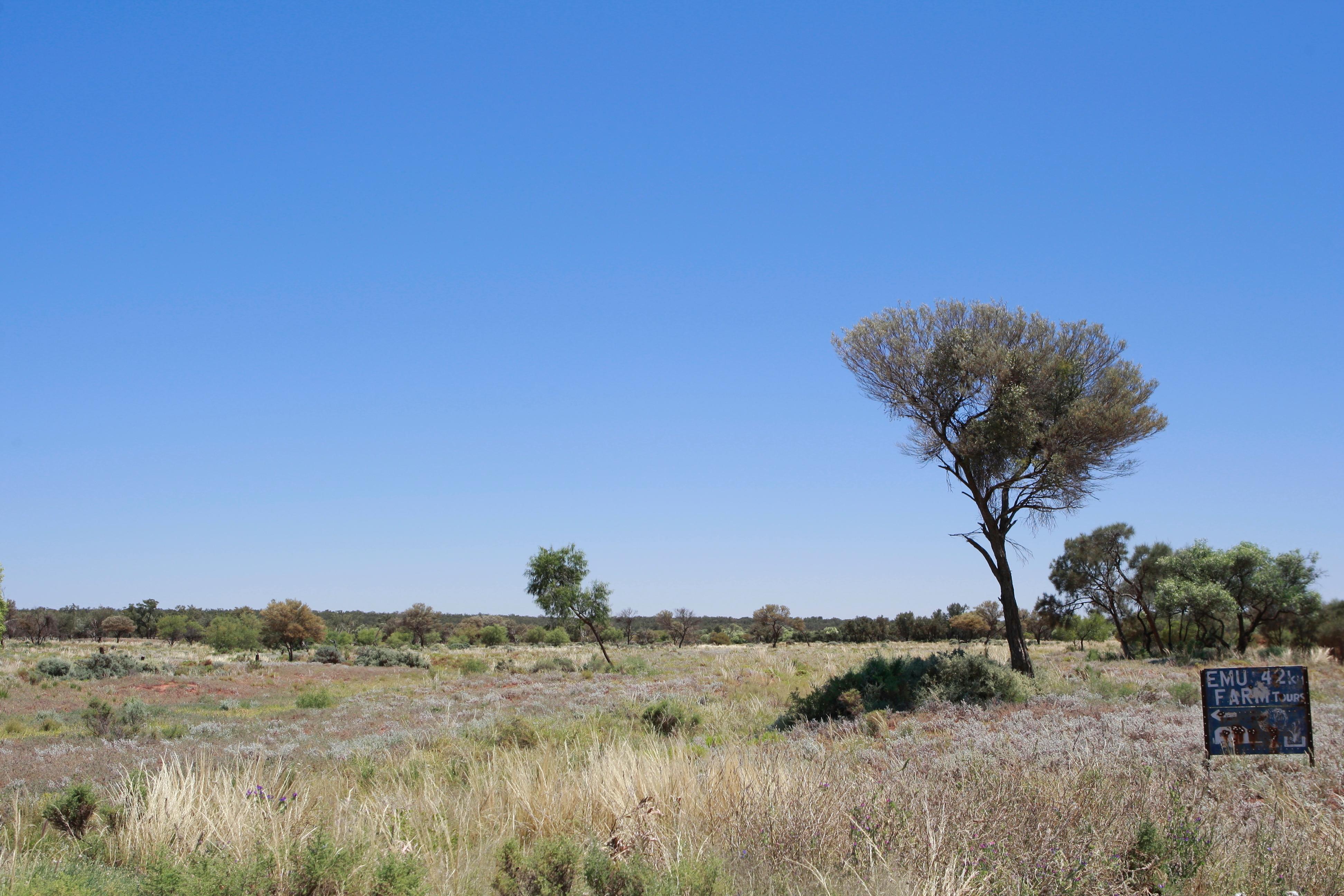 Australia_Outback_14