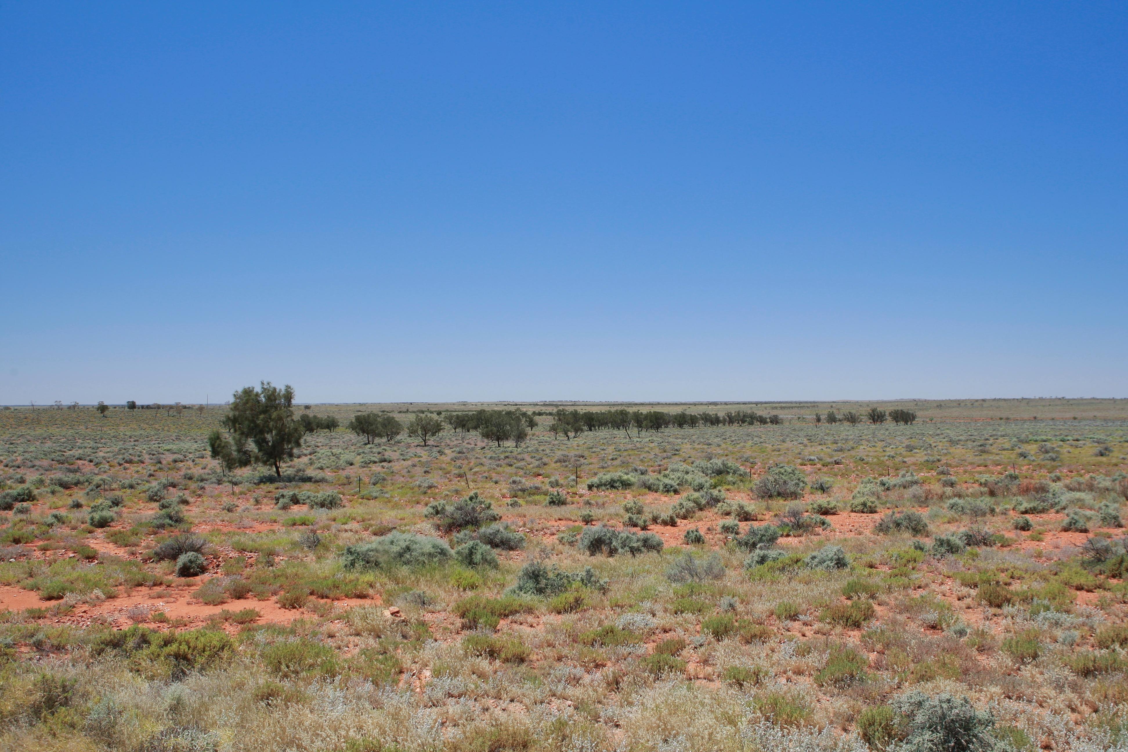 Australia_Outback_15