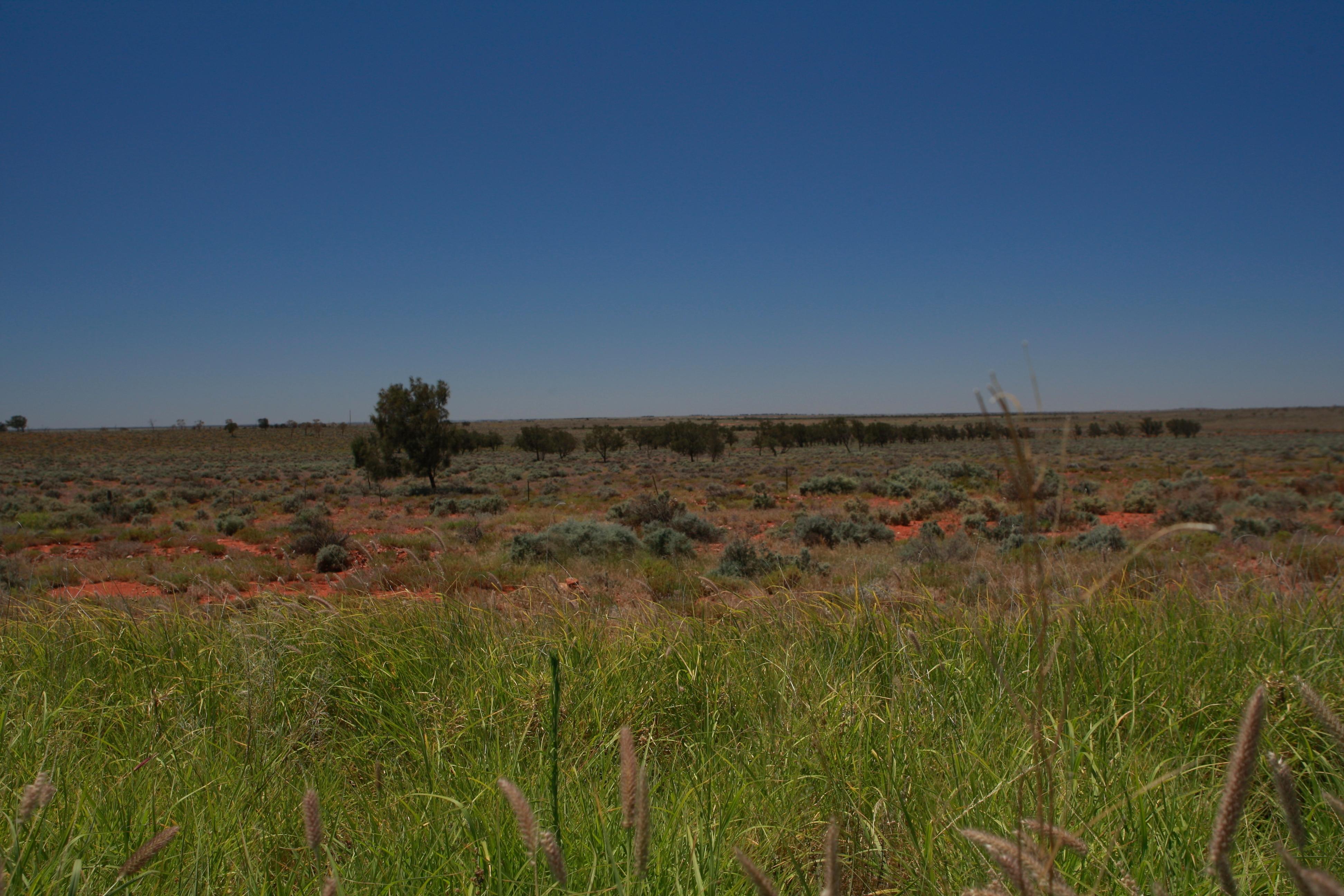 Australia_Outback_17