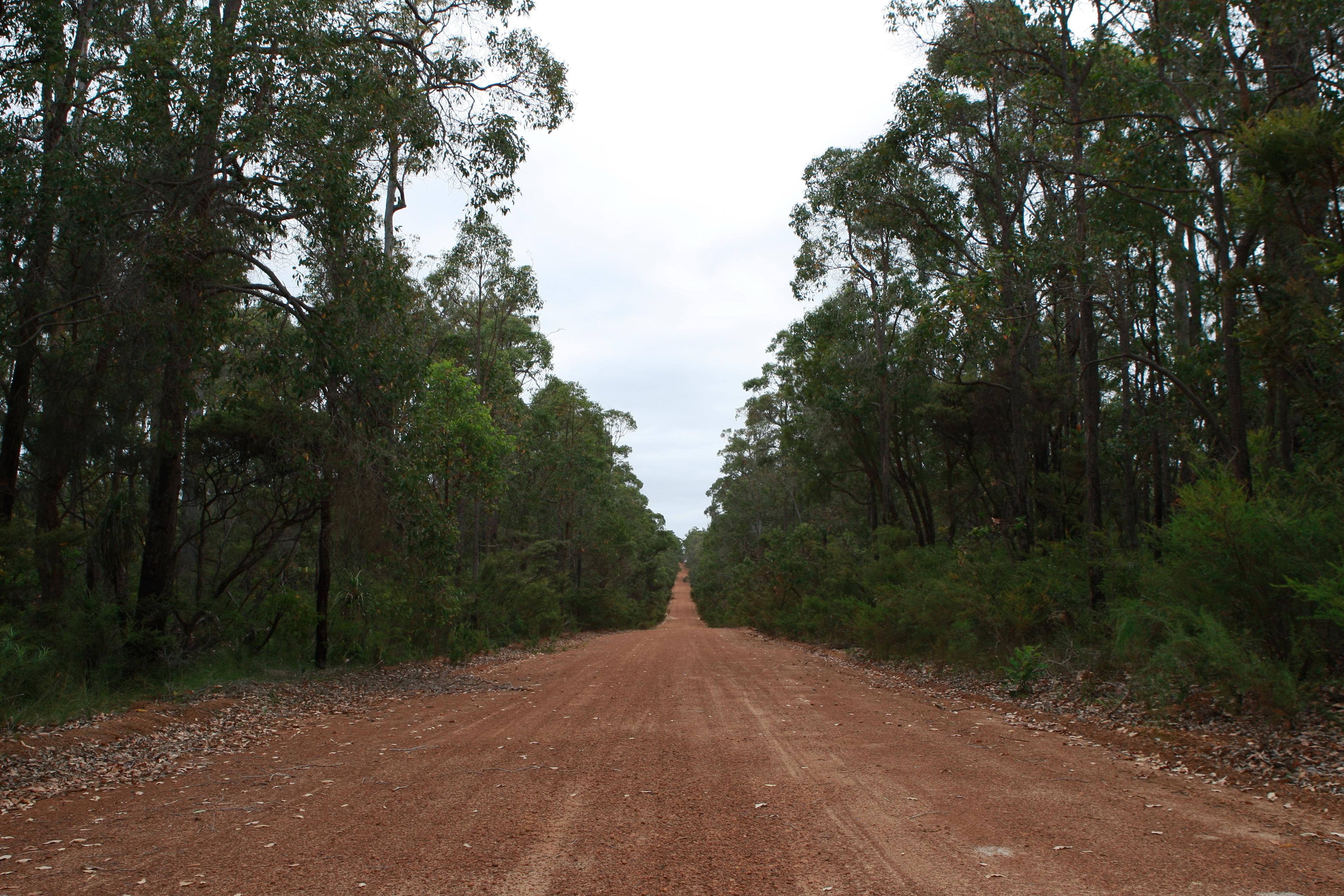 Australia_Outback_37