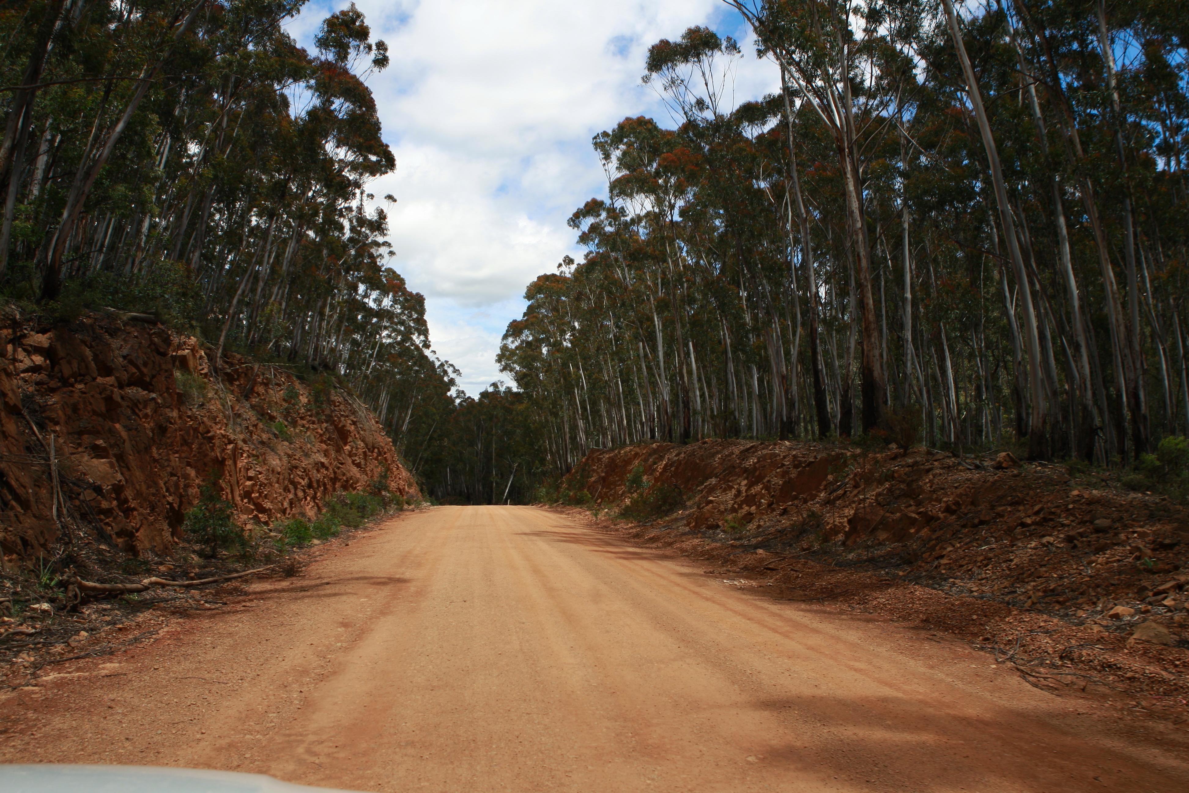 Australia_Outback_40