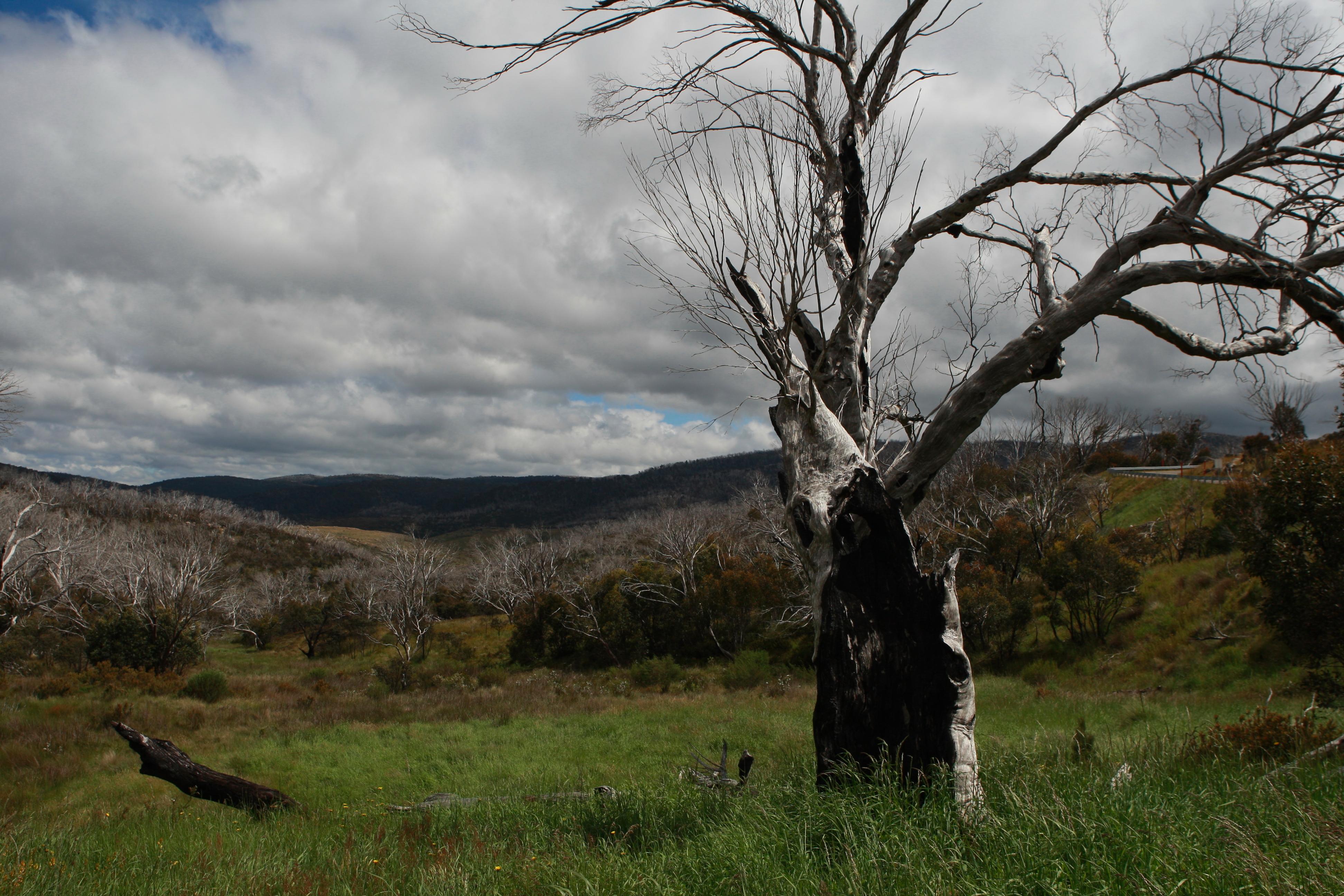 Australia_Outback_42