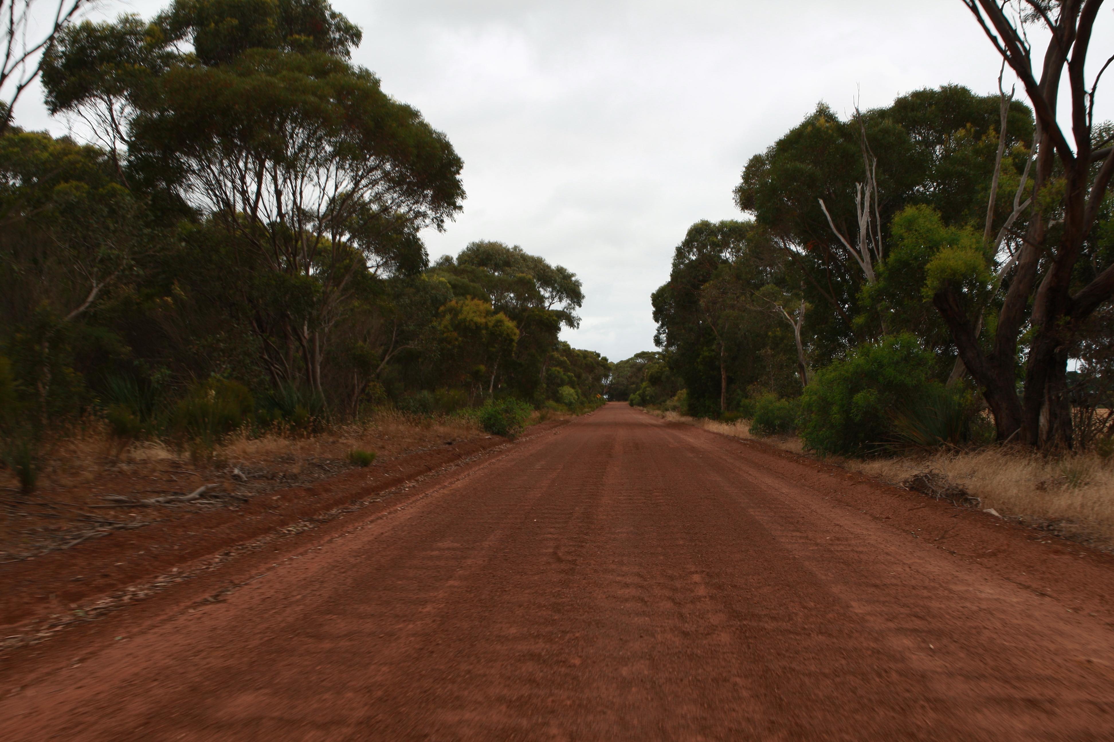 Australia_Outback_54