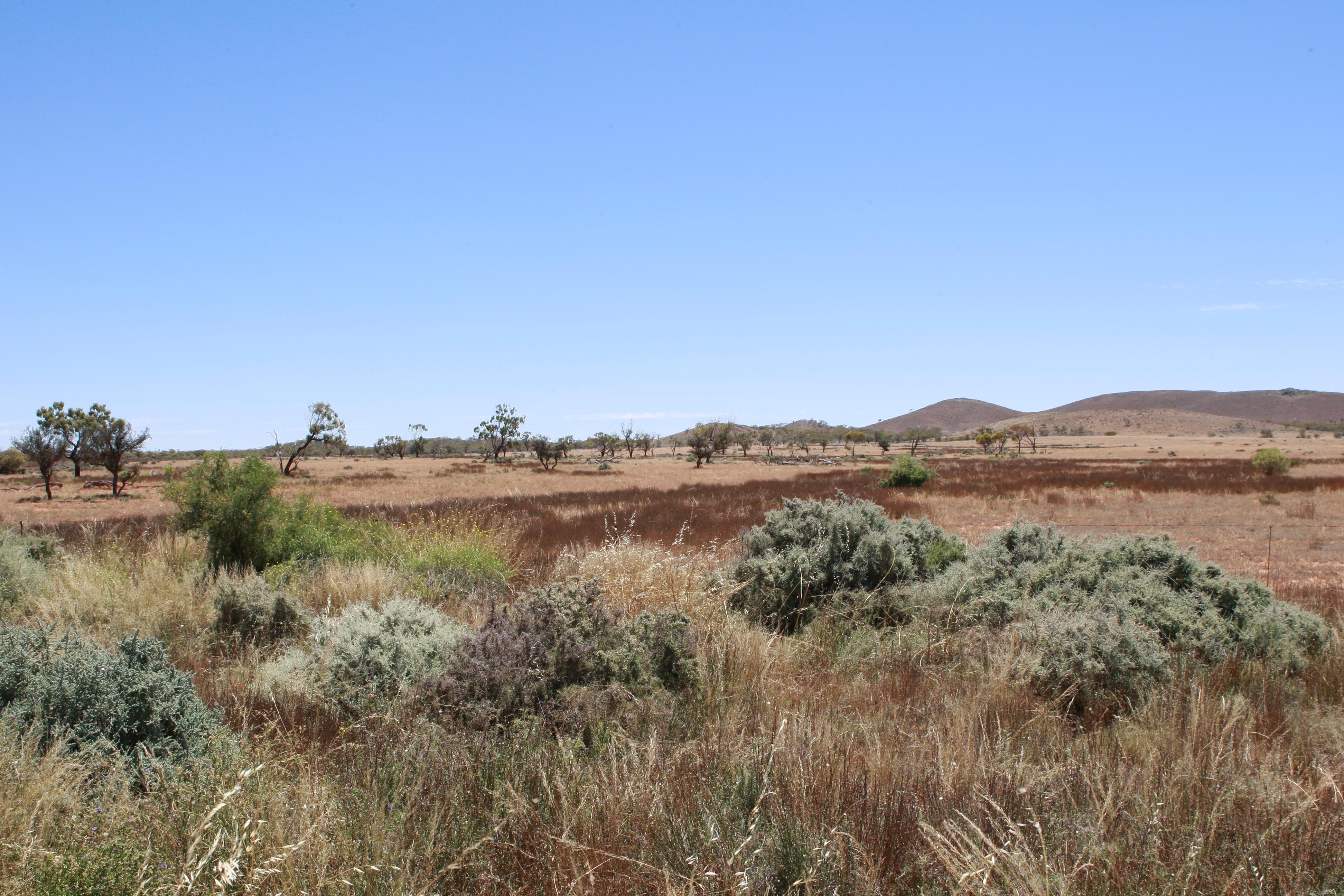 Australia_Outback_55