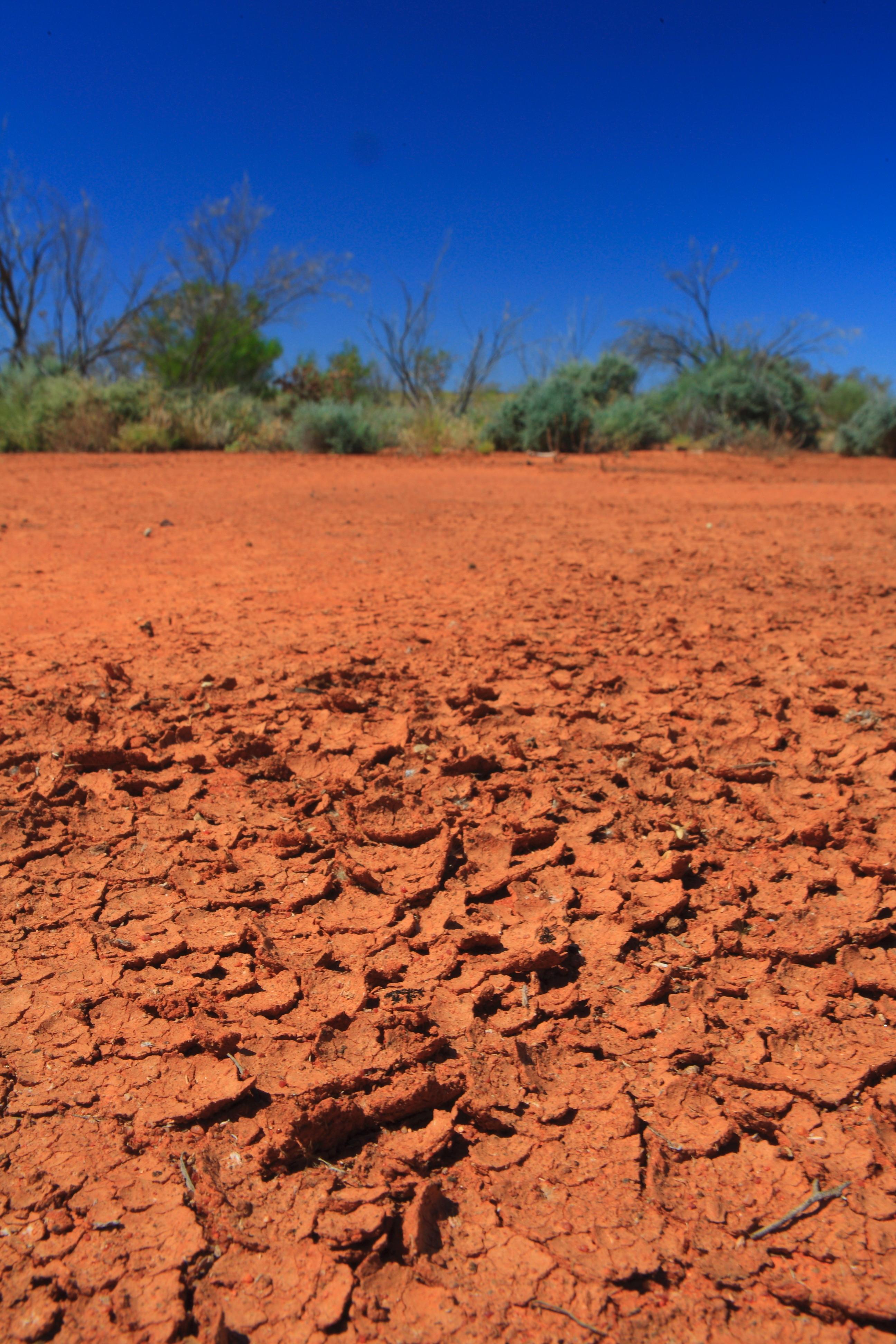 Australia_Outback_62