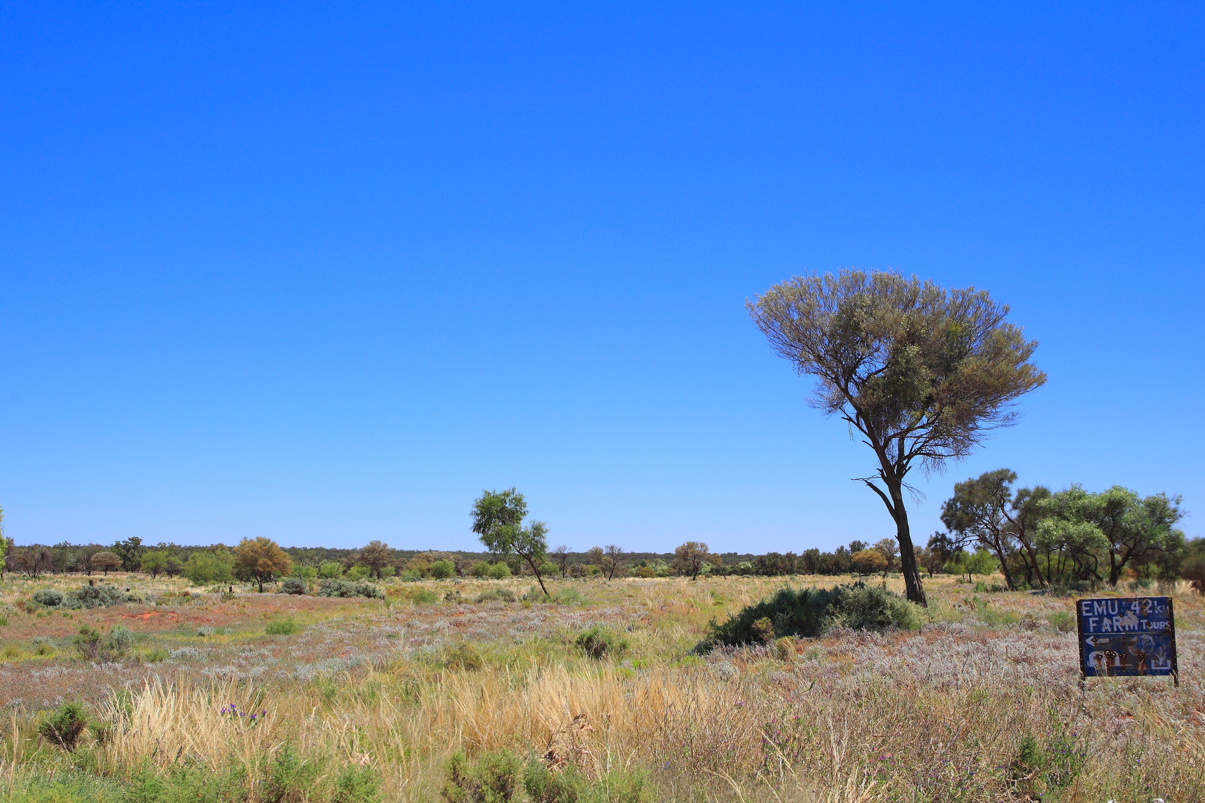 Australia_Outback_63