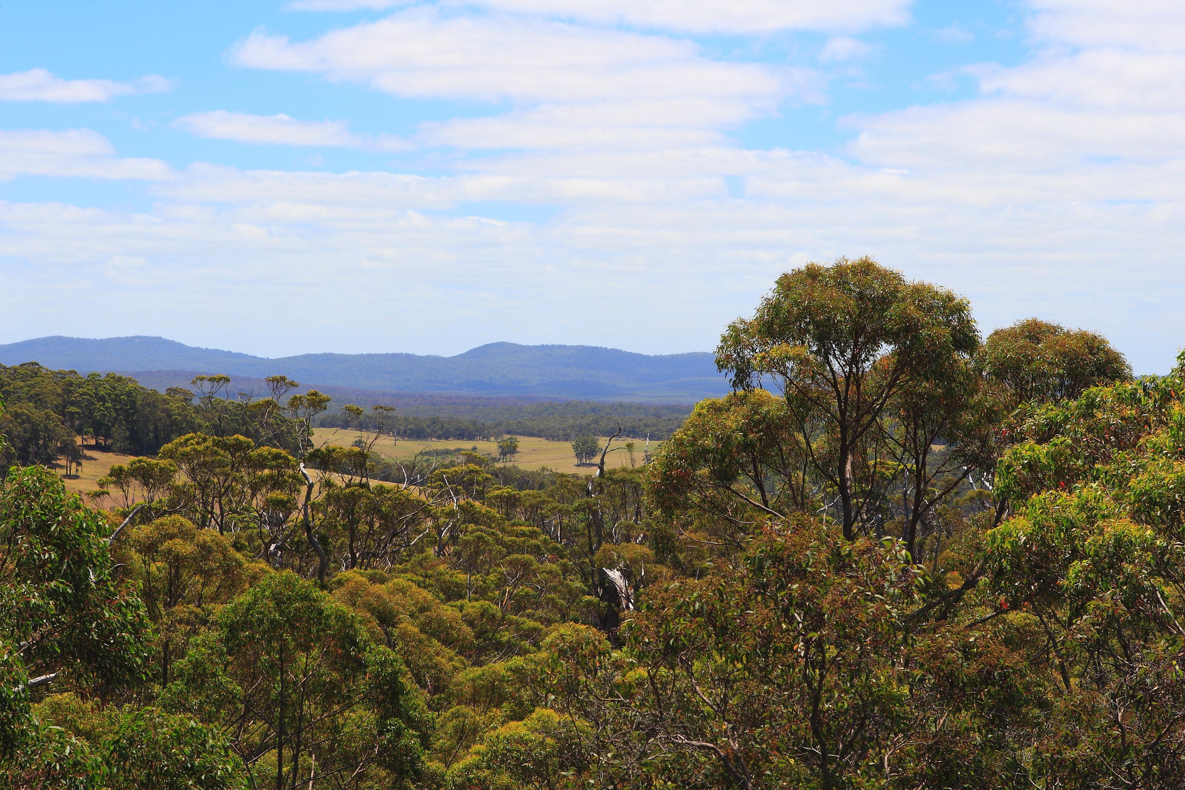 Australia_Outback_70